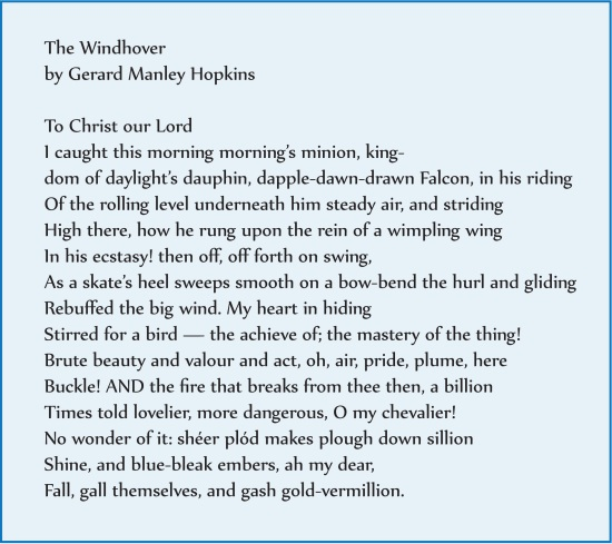 The Windhover by Gerald Marely Hopkins World Poetry Day
