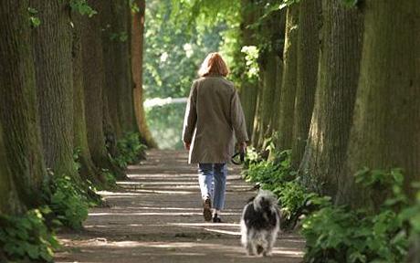 Lady walking dog
