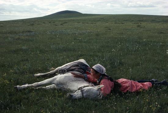 1979-Horse-training Eve Arnold