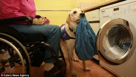 bryon washing machine