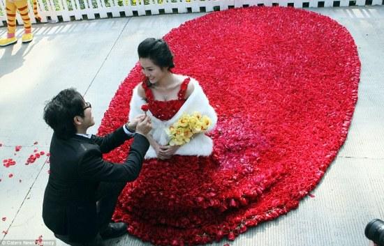 valentine wedding proposal in rose dress