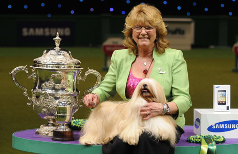 Crufts winner Elizabeth