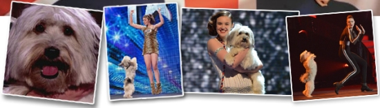 pudsey and ashleigh winners of britain's got talent