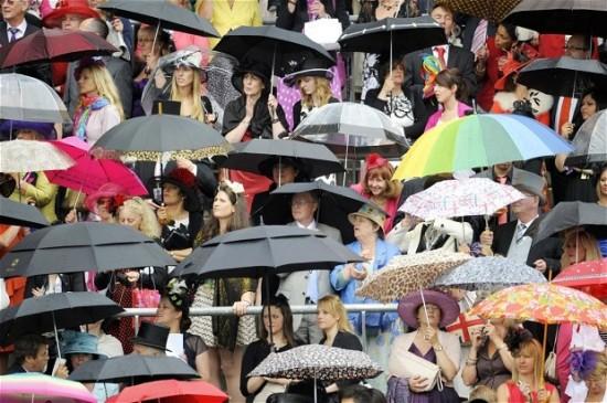 Sea of umbrellas